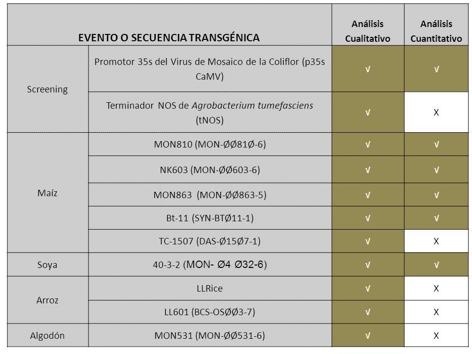 EVENTO O SECUENCIA TRANSGÉNICA Análisis Cualitativo Análisis Cuantitativo Screening Promotor 35s del Virus de Mosaico de la Coliflor (p35s CaMV) Terminador NOS de Agrobacterium tumefasciens (tNOS) X Maíz MON810 (MON-ØØ81Ø-6) NK603 (MON-ØØ603-6) MON863 (MON-ØØ863-5) Bt-11 (SYN-BTØ11-1) TC-1507 (DAS-Ø15Ø7-1)X Soya 40-3-2 (MON- Ø4 Ø32-6) Arroz LLRiceX LL601 (BCS-OSØØ3-7)X AlgodónMON531 (MON-ØØ531-6)X