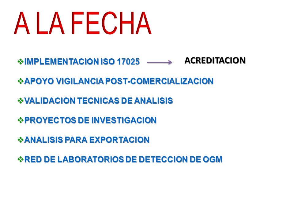 IMPLEMENTACION ISO 17025 IMPLEMENTACION ISO 17025 APOYO VIGILANCIA POST-COMERCIALIZACION APOYO VIGILANCIA POST-COMERCIALIZACION VALIDACION TECNICAS DE ANALISIS VALIDACION TECNICAS DE ANALISIS PROYECTOS DE INVESTIGACION PROYECTOS DE INVESTIGACION ANALISIS PARA EXPORTACION ANALISIS PARA EXPORTACION RED DE LABORATORIOS DE DETECCION DE OGM RED DE LABORATORIOS DE DETECCION DE OGM ACREDITACION