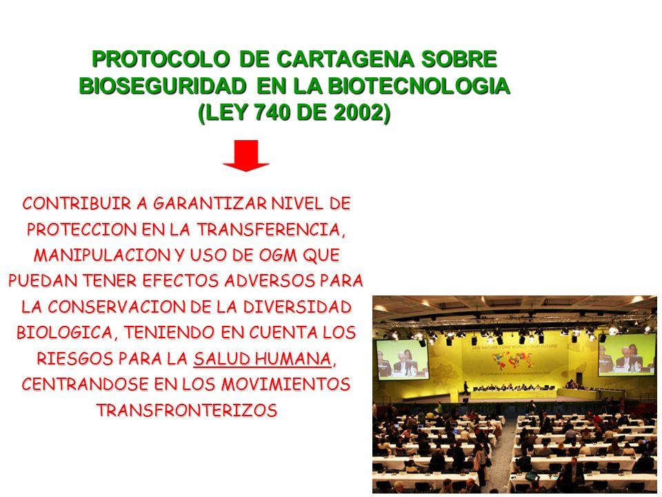 PROTOCOLO DE CARTAGENA SOBRE BIOSEGURIDAD EN LA BIOTECNOLOGIA (LEY 740 DE 2002) CONTRIBUIR A GARANTIZAR NIVEL DE PROTECCION EN LA TRANSFERENCIA, MANIPULACION Y USO DE OGM QUE PUEDAN TENER EFECTOS ADVERSOS PARA LA CONSERVACION DE LA DIVERSIDAD BIOLOGICA, TENIENDO EN CUENTA LOS RIESGOS PARA LA SALUD HUMANA, CENTRANDOSE EN LOS MOVIMIENTOS TRANSFRONTERIZOS