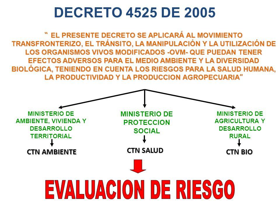 DECRETO 4525 DE 2005 EL PRESENTE DECRETO SE APLICARÁ AL MOVIMIENTO TRANSFRONTERIZO, EL TRÁNSITO, LA MANIPULACIÓN Y LA UTILIZACIÓN DE LOS ORGANISMOS VIVOS MODIFICADOS -OVM- QUE PUEDAN TENER EFECTOS ADVERSOS PARA EL MEDIO AMBIENTE Y LA DIVERSIDAD BIOLÓGICA, TENIENDO EN CUENTA LOS RIESGOS PARA LA SALUD HUMANA, LA PRODUCTIVIDAD Y LA PRODUCCION AGROPECUARIA EL PRESENTE DECRETO SE APLICARÁ AL MOVIMIENTO TRANSFRONTERIZO, EL TRÁNSITO, LA MANIPULACIÓN Y LA UTILIZACIÓN DE LOS ORGANISMOS VIVOS MODIFICADOS -OVM- QUE PUEDAN TENER EFECTOS ADVERSOS PARA EL MEDIO AMBIENTE Y LA DIVERSIDAD BIOLÓGICA, TENIENDO EN CUENTA LOS RIESGOS PARA LA SALUD HUMANA, LA PRODUCTIVIDAD Y LA PRODUCCION AGROPECUARIA MINISTERIO DE AMBIENTE, VIVIENDA Y DESARROLLO TERRITORIAL MINISTERIO DE PROTECCION SOCIAL MINISTERIO DE AGRICULTURA Y DESARROLLO RURAL CTN AMBIENTE CTN BIO CTN SALUD