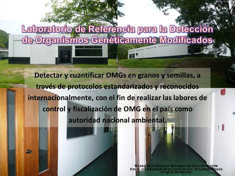 Museo de la Estación Biológica de Rancho Grande Km. 0, vía Ocumare de la Costa de Oro. El Limón, estado Aragua. Venezuela Detectar y cuantificar OMGs