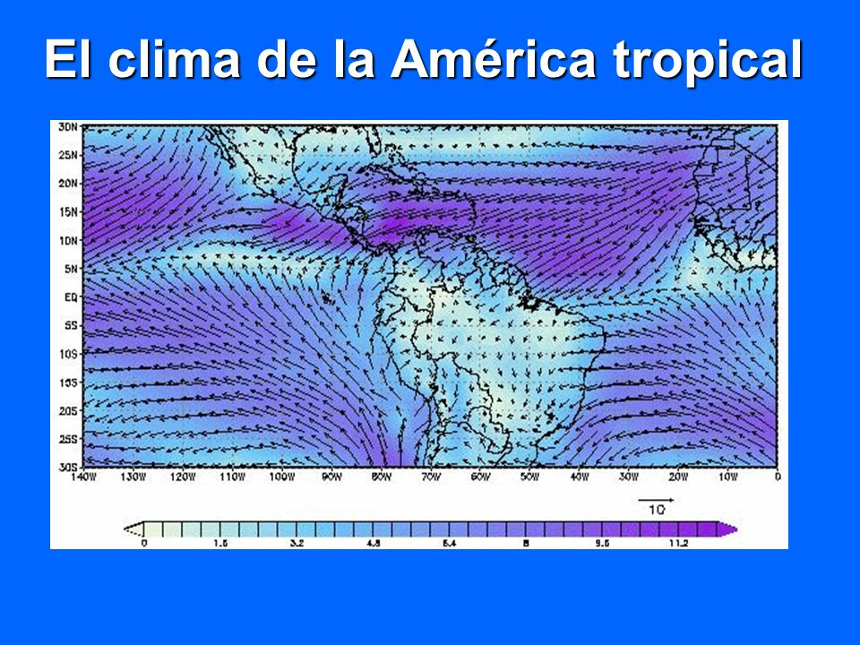 Efecto del fenómeno El Niño 1997-1998 en la precipitación de los países andinos FUENTE: Pabón, 1998 XXXXXXX