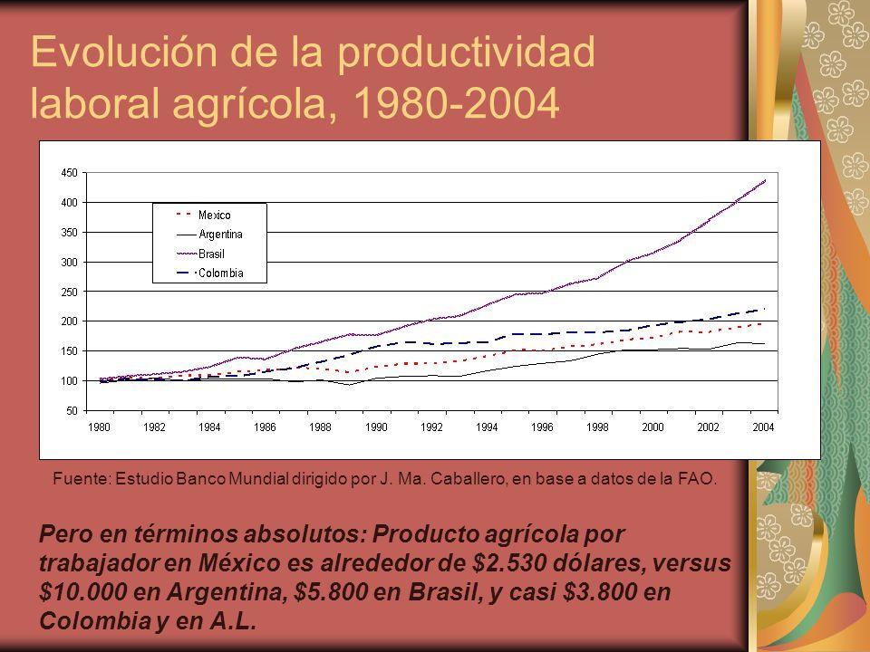 Evolución de la productividad laboral agrícola, 1980-2004 Fuente: Estudio Banco Mundial dirigido por J.