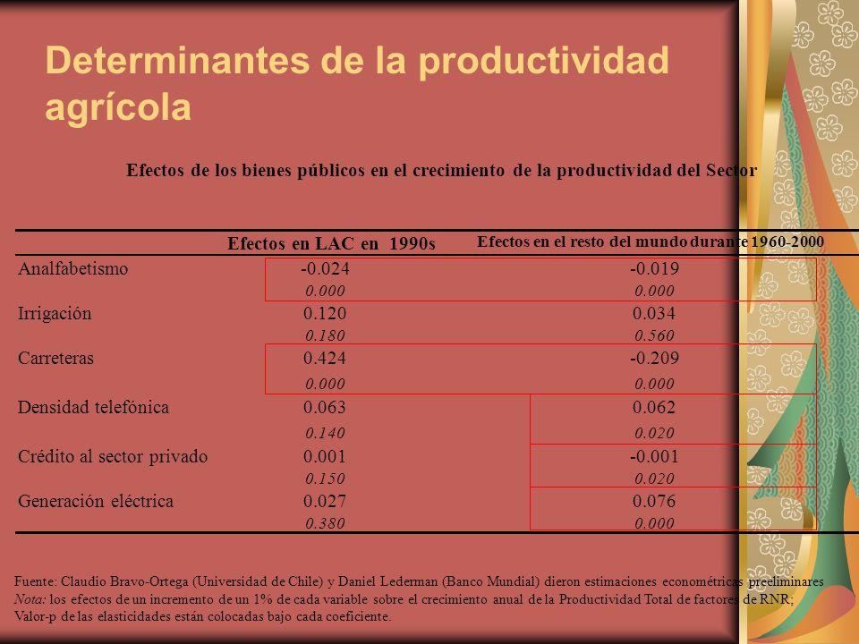 Determinantes de la productividad agrícola Efectos en LAC en 1990s Efectos en el resto del mundo durante 1960-2000 Analfabetismo-0.024-0.019 0.000 Irrigación0.1200.034 0.1800.560 Carreteras0.424-0.209 0.000 Densidad telefónica0.0630.062 0.1400.020 Crédito al sector privado0.001-0.001 0.1500.020 Generación eléctrica0.0270.076 0.3800.000 Fuente: Claudio Bravo-Ortega (Universidad de Chile) y Daniel Lederman (Banco Mundial) dieron estimaciones econométricas preeliminares Nota: los efectos de un incremento de un 1% de cada variable sobre el crecimiento anual de la Productividad Total de factores de RNR; Valor-p de las elasticidades están colocadas bajo cada coeficiente.