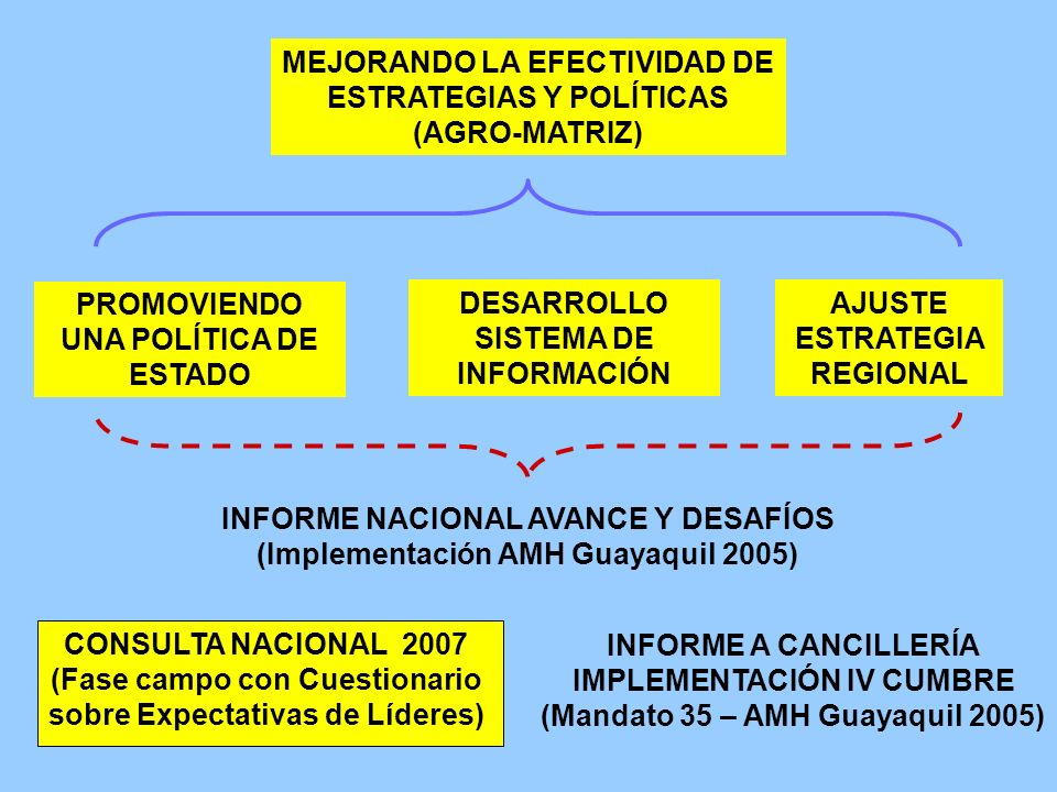 MEJORANDO LA EFECTIVIDAD DE ESTRATEGIAS Y POLÍTICAS (AGRO-MATRIZ) PROMOVIENDO UNA POLÍTICA DE ESTADO DESARROLLO SISTEMA DE INFORMACIÓN AJUSTE ESTRATEG
