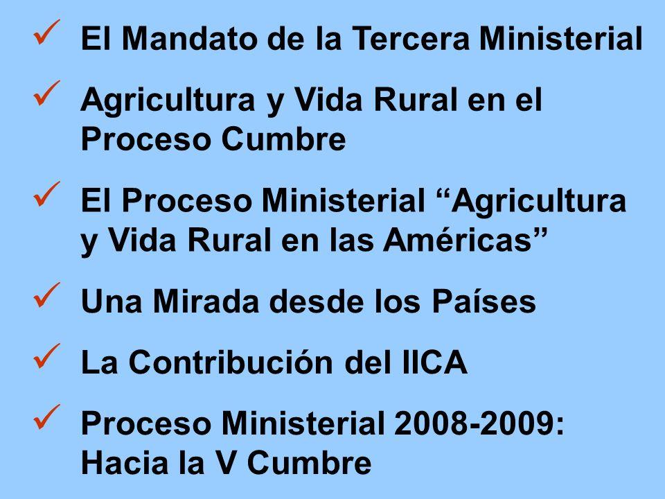 Una Mirada desde los Países Agricultura y Vida Rural en el Proceso Cumbre El Mandato de la Tercera Ministerial El Proceso Ministerial Agricultura y Vida Rural en las Américas La Contribución del IICA Proceso Ministerial 2008-2009: Hacia la V Cumbre