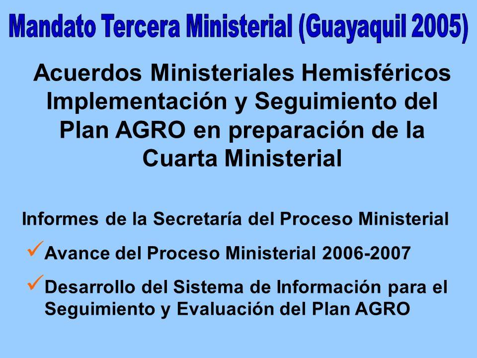 MEJORANDO LA EFECTIVIDAD DE ESTRATEGIAS Y POLÍTICAS (AGRO-MATRIZ) PROMOVIENDO UNA POLÍTICA DE ESTADO DESARROLLO SISTEMA DE INFORMACIÓN AJUSTE ESTRATEGIA REGIONAL INFORME NACIONAL AVANCE Y DESAFÍOS (Implementación AMH Guayaquil 2005) CONSULTA NACIONAL 2007 (Fase campo con Cuestionario sobre Expectativas de Líderes) INFORME A CANCILLERÍA IMPLEMENTACIÓN IV CUMBRE (Mandato 35 – AMH Guayaquil 2005)