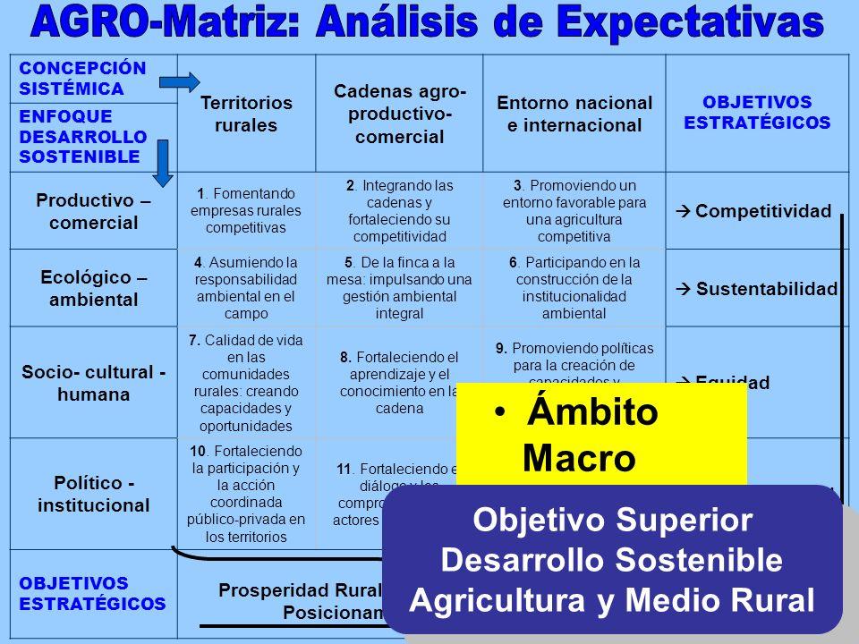 CONCEPCIÓN SISTÉMICA Territorios rurales Cadenas agro- productivo- comercial Entorno nacional e internacional OBJETIVOS ESTRATÉGICOS ENFOQUE DESARROLLO SOSTENIBLE Productivo – comercial 1.