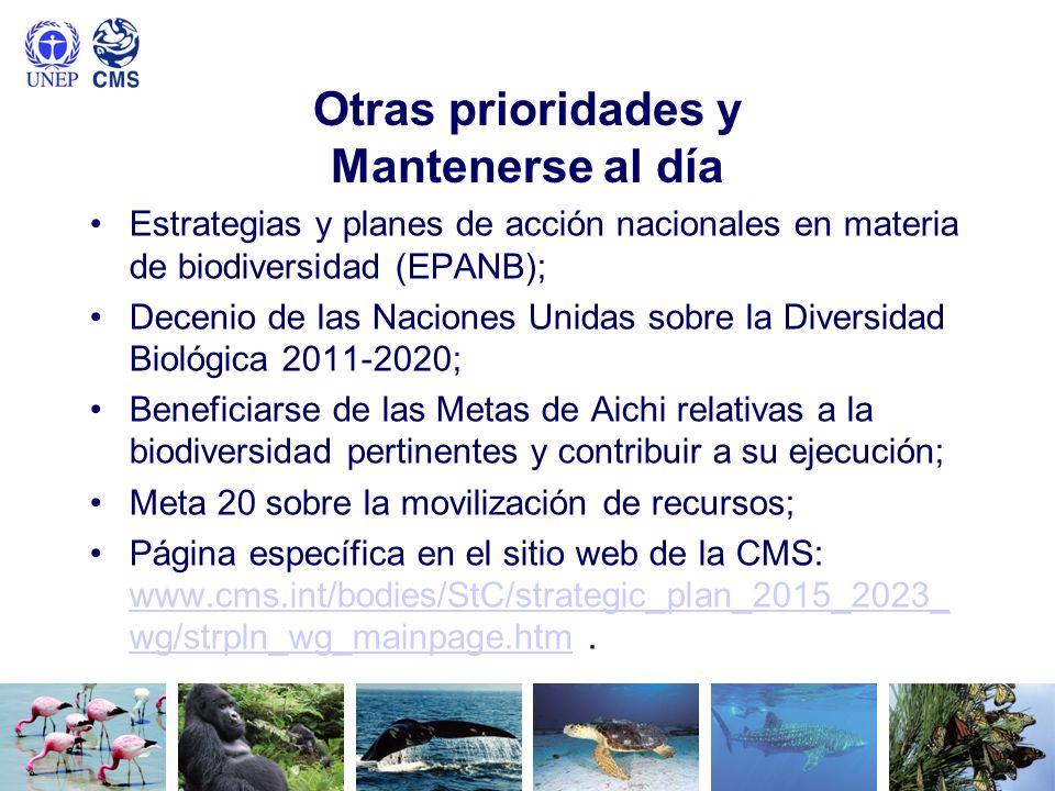 Otras prioridades y Mantenerse al día Estrategias y planes de acción nacionales en materia de biodiversidad (EPANB); Decenio de las Naciones Unidas so