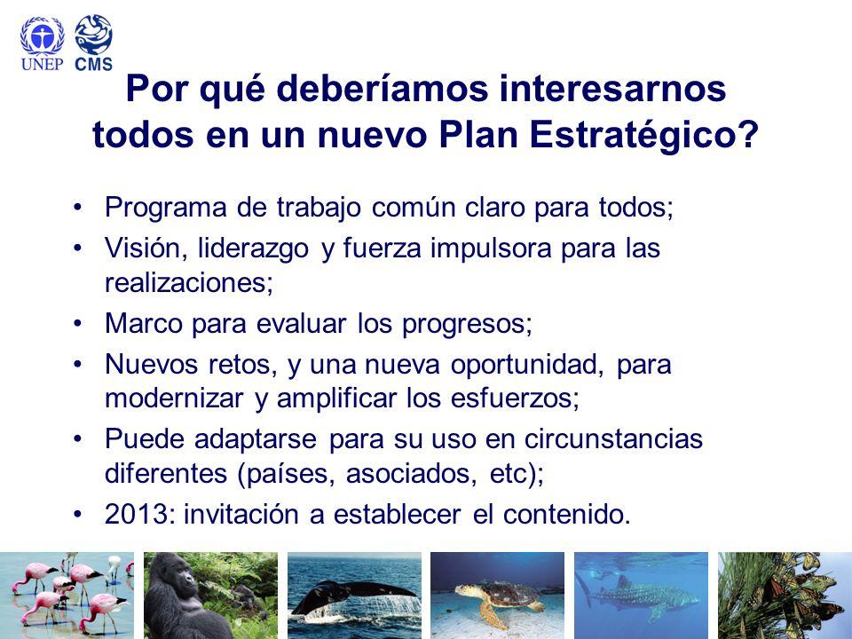 Por qué deberíamos interesarnos todos en un nuevo Plan Estratégico? Programa de trabajo común claro para todos; Visión, liderazgo y fuerza impulsora p