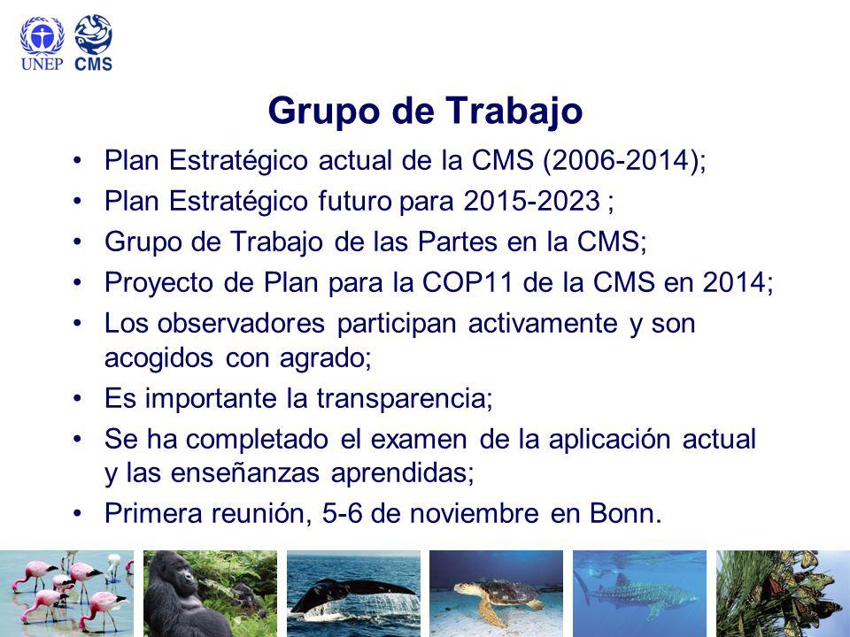 Grupo de Trabajo Plan Estratégico actual de la CMS (2006-2014); Plan Estratégico futuro para 2015-2023 ; Grupo de Trabajo de las Partes en la CMS; Pro