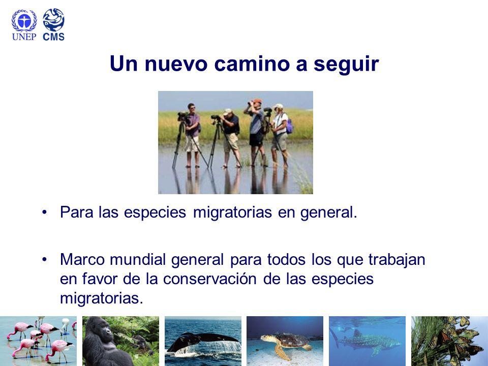 Un nuevo camino a seguir Para las especies migratorias en general. Marco mundial general para todos los que trabajan en favor de la conservación de la