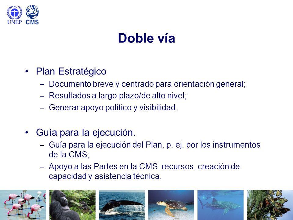 Doble vía Plan Estratégico –Documento breve y centrado para orientación general; –Resultados a largo plazo/de alto nivel; –Generar apoyo político y vi