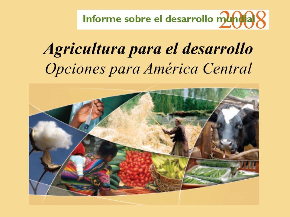 Agricultura para el desarrollo Opciones para América Central