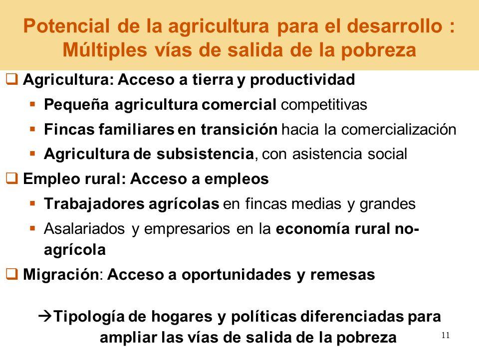 11 Agricultura: Acceso a tierra y productividad Pequeña agricultura comercial competitivas Fincas familiares en transición hacia la comercialización A