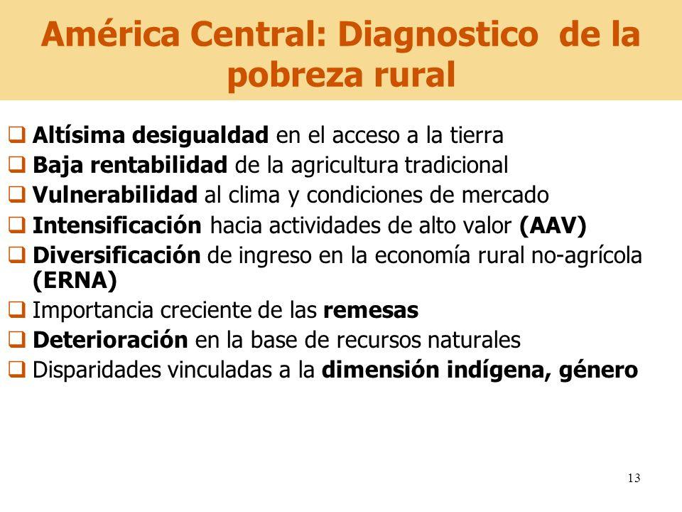 13 América Central: Diagnostico de la pobreza rural Altísima desigualdad en el acceso a la tierra Baja rentabilidad de la agricultura tradicional Vuln