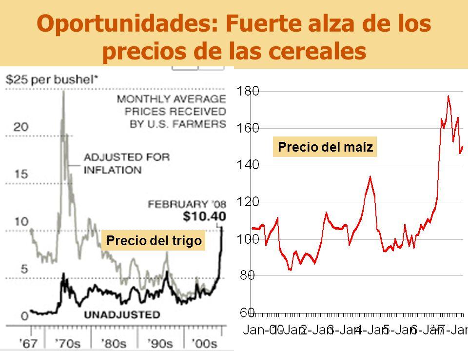 22 Oportunidades: Fuerte alza de los precios de las cereales Precio del maíz Precio del trigo