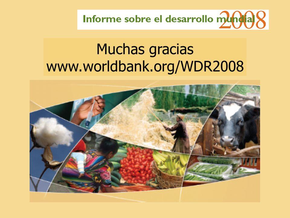 Muchas gracias www.worldbank.org/WDR2008