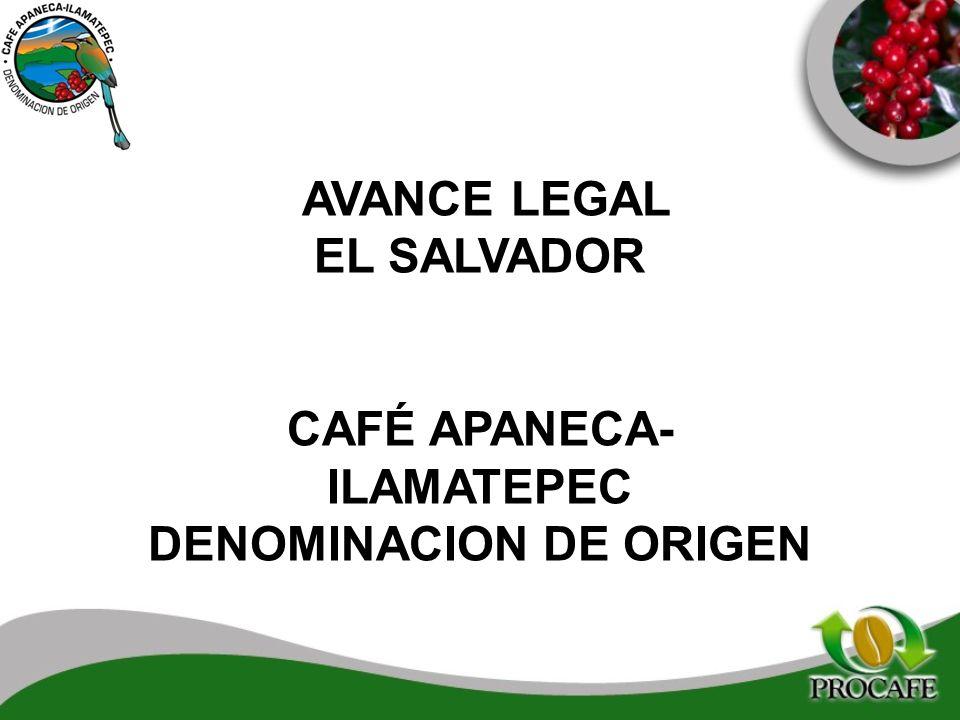AVANCE LEGAL EL SALVADOR CAFÉ APANECA- ILAMATEPEC DENOMINACION DE ORIGEN