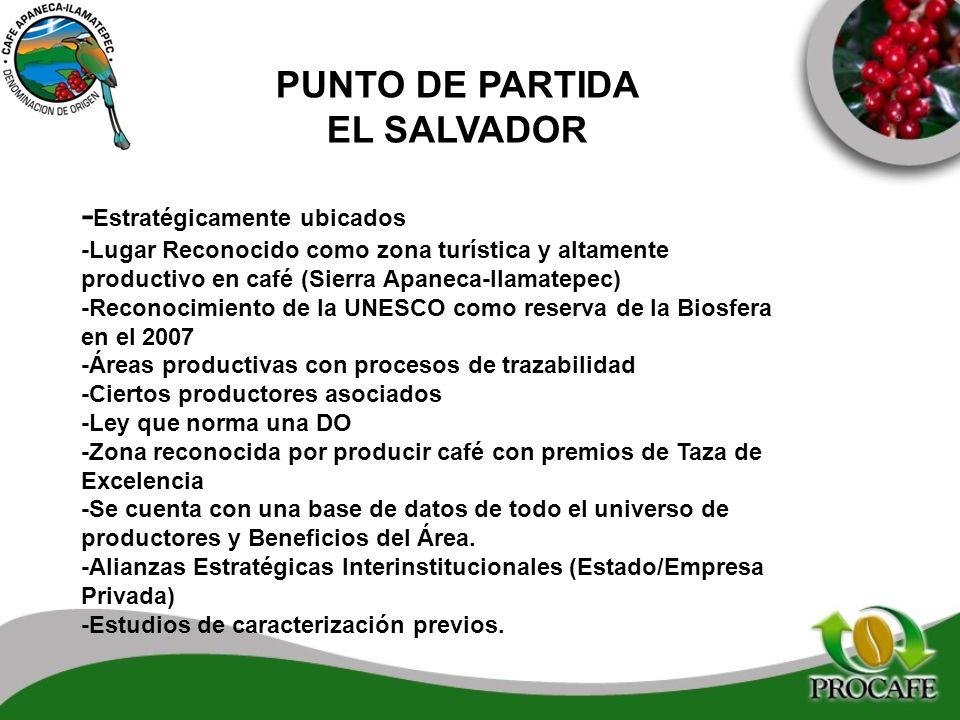 PUNTO DE PARTIDA EL SALVADOR - Estratégicamente ubicados -Lugar Reconocido como zona turística y altamente productivo en café (Sierra Apaneca-IIamatep