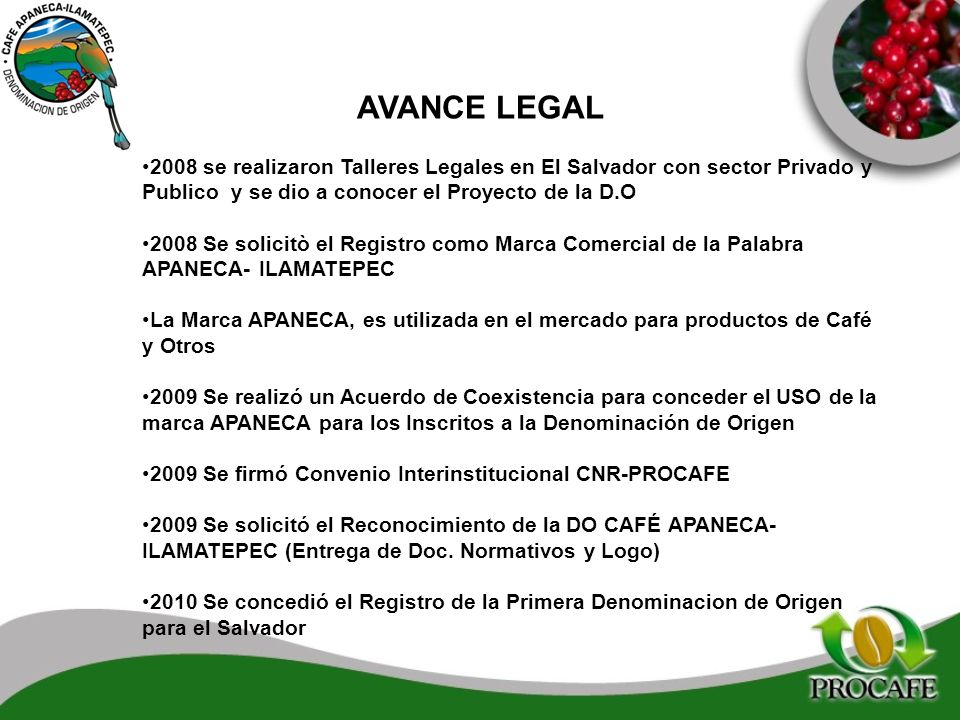 AVANCE LEGAL 2008 se realizaron Talleres Legales en El Salvador con sector Privado y Publico y se dio a conocer el Proyecto de la D.O 2008 Se solicitò