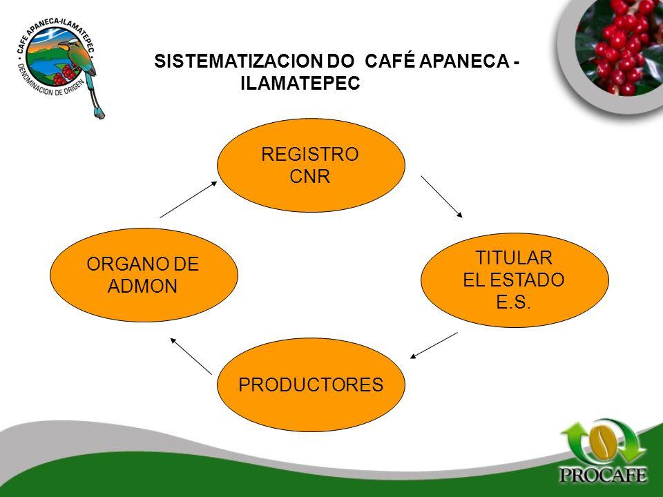 SISTEMATIZACION DO CAFÉ APANECA - ILAMATEPEC REGISTRO CNR TITULAR EL ESTADO E.S. ORGANO DE ADMON PRODUCTORES
