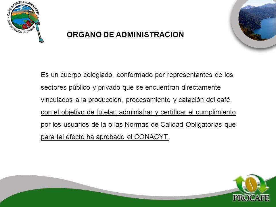 ORGANO DE ADMINISTRACION Es un cuerpo colegiado, conformado por representantes de los sectores público y privado que se encuentran directamente vincul