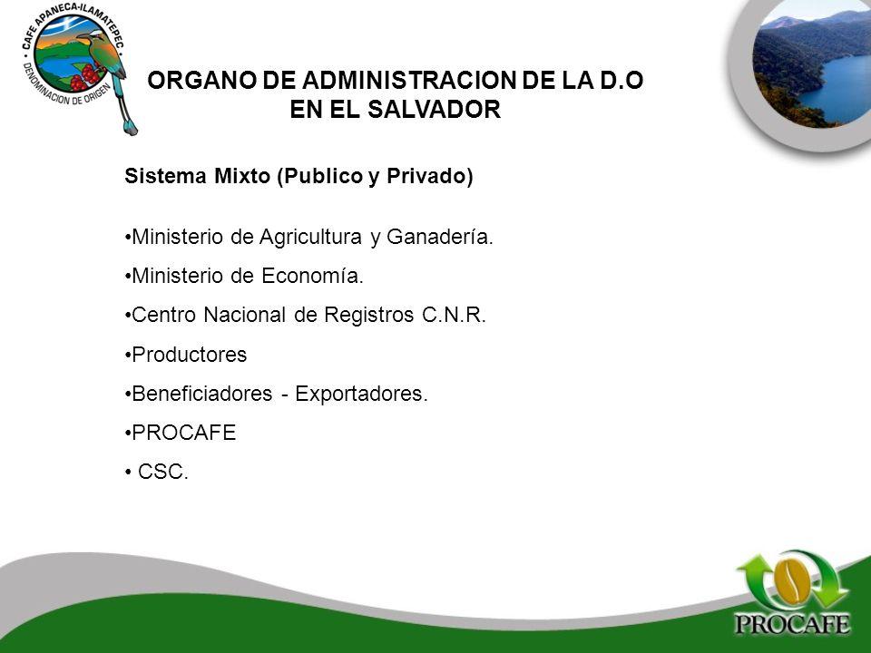 Sistema Mixto (Publico y Privado) Ministerio de Agricultura y Ganadería. Ministerio de Economía. Centro Nacional de Registros C.N.R. Productores Benef