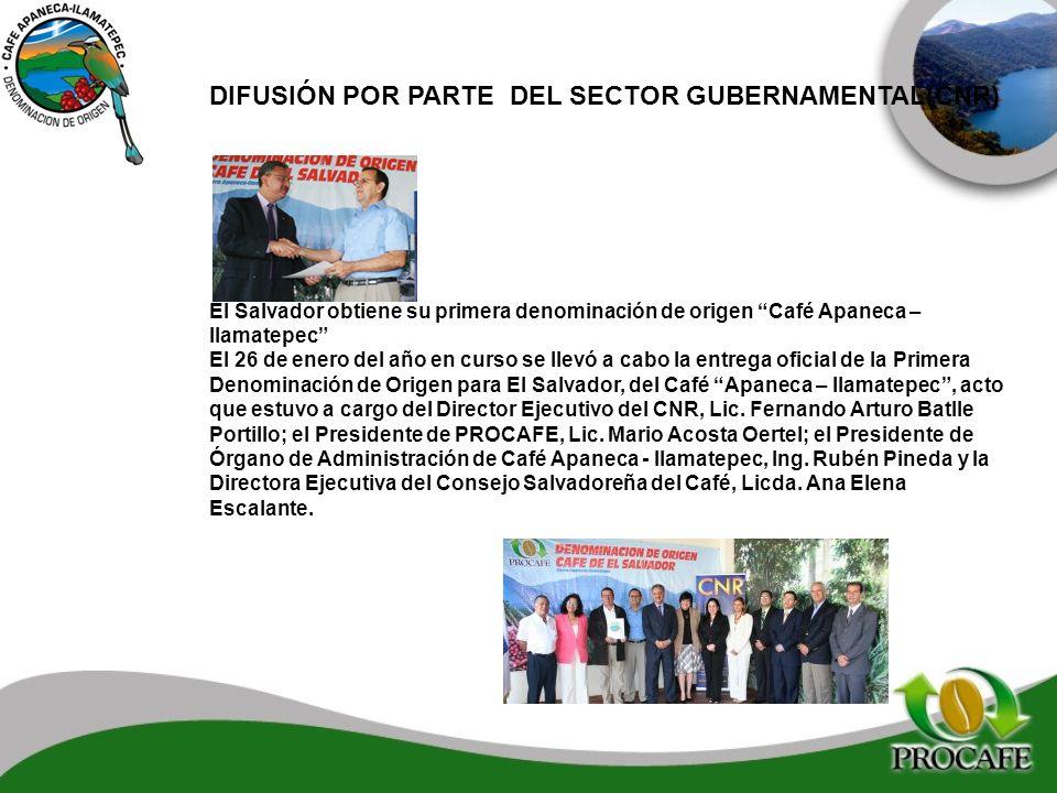 DIFUSIÓN POR PARTE DEL SECTOR GUBERNAMENTAL(CNR) El Salvador obtiene su primera denominación de origen Café Apaneca – Ilamatepec El 26 de enero del añ