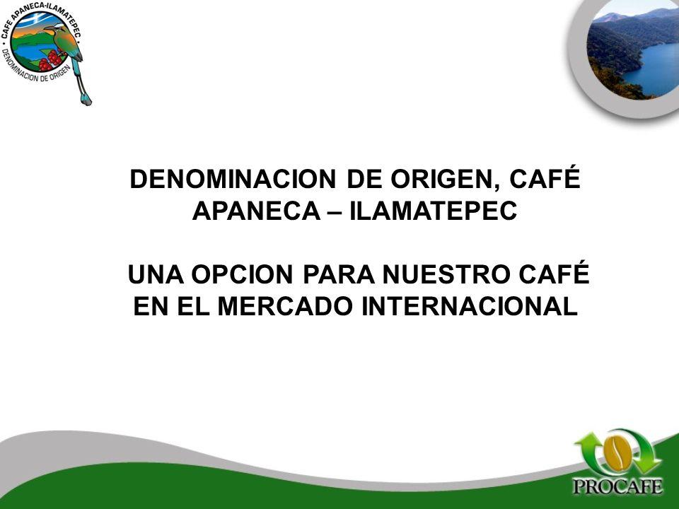 DENOMINACION DE ORIGEN, CAFÉ APANECA – ILAMATEPEC UNA OPCION PARA NUESTRO CAFÉ EN EL MERCADO INTERNACIONAL