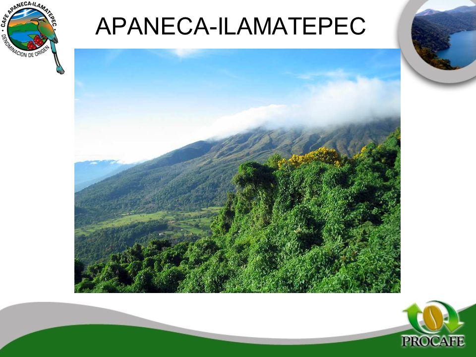 APANECA-ILAMATEPEC