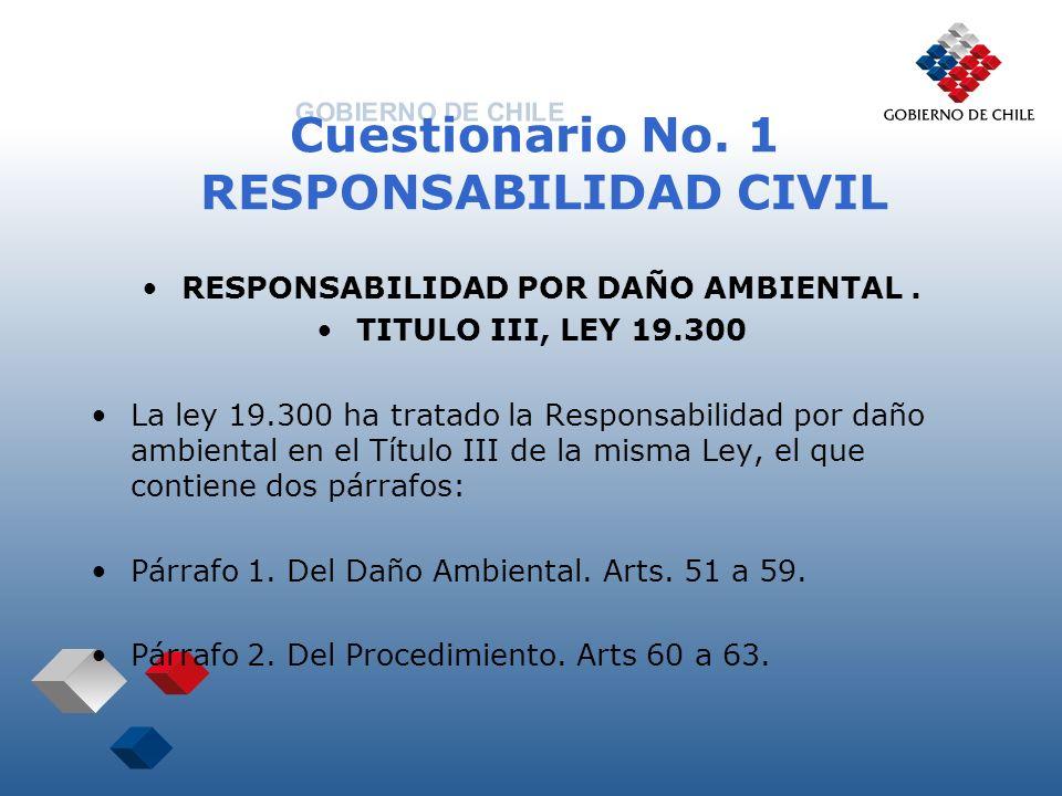 Cuestionario No. 1 RESPONSABILIDAD CIVIL RESPONSABILIDAD POR DAÑO AMBIENTAL. TITULO III, LEY 19.300 La ley 19.300 ha tratado la Responsabilidad por da