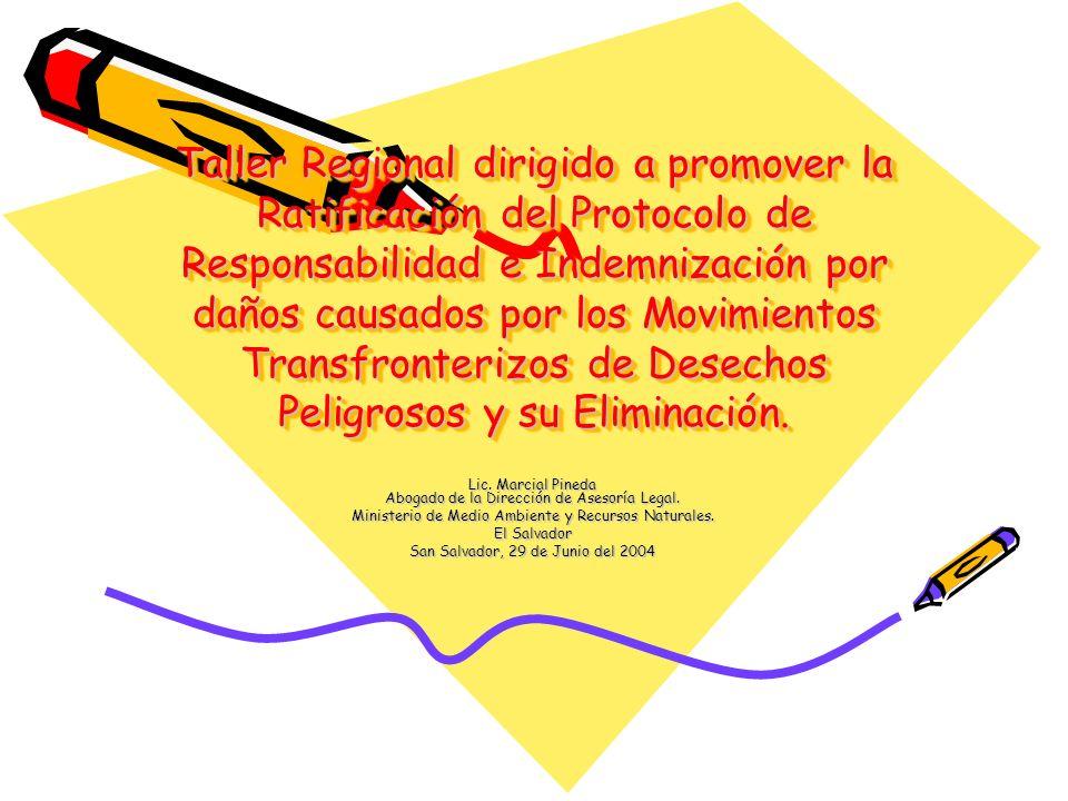 Taller Regional dirigido a promover la Ratificación del Protocolo de Responsabilidad e Indemnización por daños causados por los Movimientos Transfronterizos de Desechos Peligrosos y su Eliminación.