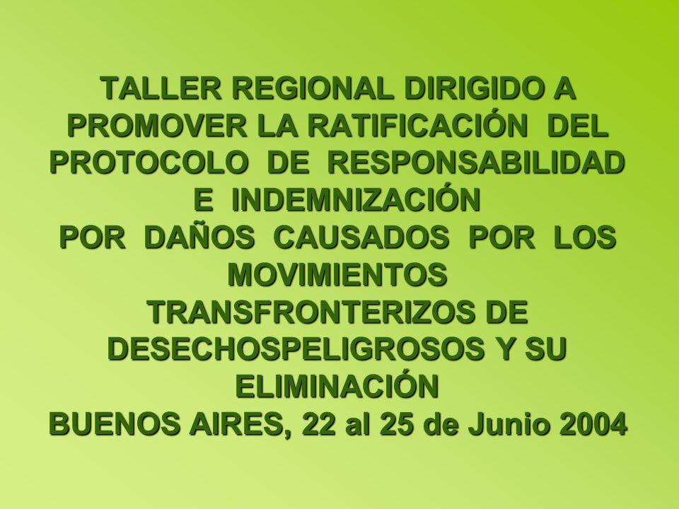 TALLER REGIONAL DIRIGIDO A PROMOVER LA RATIFICACIÓN DEL PROTOCOLO DE RESPONSABILIDAD E INDEMNIZACIÓN POR DAÑOS CAUSADOS POR LOS MOVIMIENTOS TRANSFRONTERIZOS DE DESECHOSPELIGROSOS Y SU ELIMINACIÓN BUENOS AIRES, 22 al 25 de Junio 2004