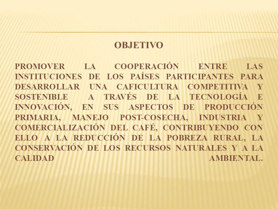 OBJETIVO PROMOVER LA COOPERACIÓN ENTRE LAS INSTITUCIONES DE LOS PAÍSES PARTICIPANTES PARA DESARROLLAR UNA CAFICULTURA COMPETITIVA Y SOSTENIBLE A TRAVÉS DE LA TECNOLOGÍA E INNOVACIÓN, EN SUS ASPECTOS DE PRODUCCIÓN PRIMARIA, MANEJO POST-COSECHA, INDUSTRIA Y COMERCIALIZACIÓN DEL CAFÉ, CONTRIBUYENDO CON ELLO A LA REDUCCIÓN DE LA POBREZA RURAL, LA CONSERVACIÓN DE LOS RECURSOS NATURALES Y A LA CALIDAD AMBIENTAL.