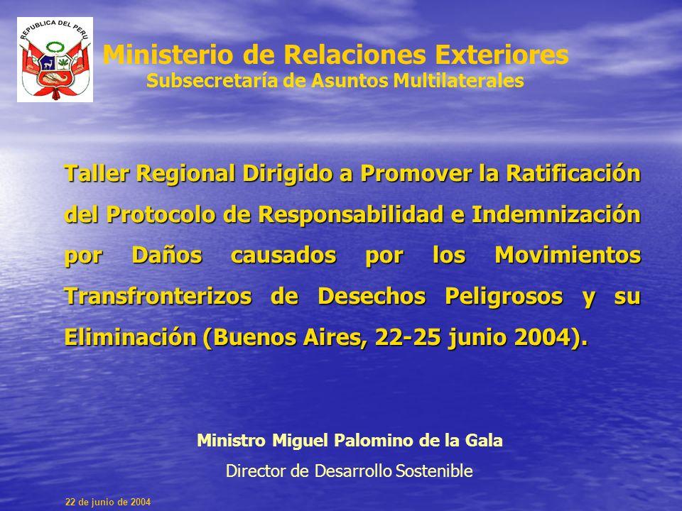 Taller Regional Dirigido a Promover la Ratificación del Protocolo de Responsabilidad e Indemnización por Daños causados por los Movimientos Transfronterizos de Desechos Peligrosos y su Eliminación (Buenos Aires, 22-25 junio 2004).