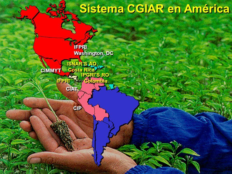 Sistema CGIAR en América CIMMYT CIAT CIP IFPRI IPGRIS RO Colombia IPGRIS RO Colombia ISNARS AO Costa Rica ISNARS AO Costa Rica IFPRI Washington, DC IF