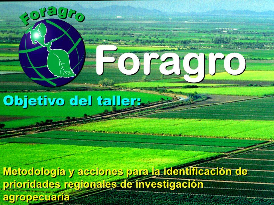 Objetivo del taller: Metodología y acciones para la identificación de prioridades regionales de investigación agropecuaria Objetivo del taller: Metodo