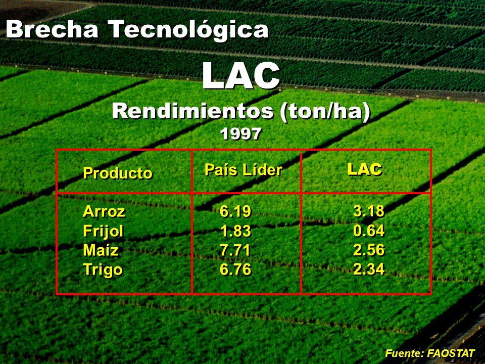 LAC Rendimientos (ton/ha) 1997 LAC Rendimientos (ton/ha) 1997 Producto Arroz Frijol Maíz Trigo Arroz Frijol Maíz Trigo País Líder 6.19 1.83 7.71 6.76