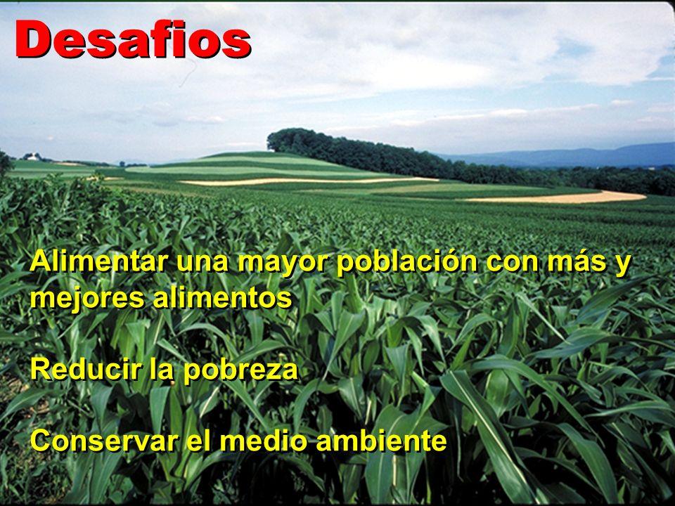 Desafios Alimentar una mayor población con más y mejores alimentos Reducir la pobreza Conservar el medio ambiente Alimentar una mayor población con má