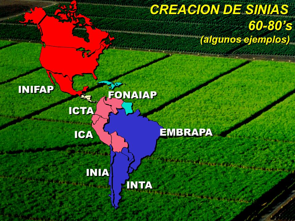 CREACION DE SINIAS 60-80s (algunos ejemplos) CREACION DE SINIAS 60-80s (algunos ejemplos) ICA INTA INIFAP EMBRAPA ICTA INIA FONAIAP