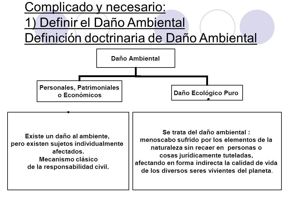 Complicado y necesario: 1) Definir el Daño Ambiental Daño Ambiental Personales, Patrimoniales o Económicos Existe un daño al ambiente, pero existen su