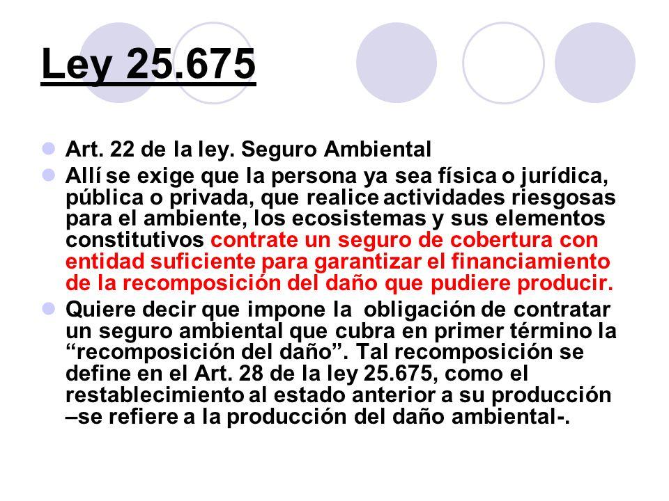 Ley 25.675 Art. 22 de la ley. Seguro Ambiental Allí se exige que la persona ya sea física o jurídica, pública o privada, que realice actividades riesg