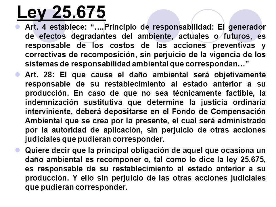 Ley 25.675 Art. 4 establece: ….Principio de responsabilidad: El generador de efectos degradantes del ambiente, actuales o futuros, es responsable de l