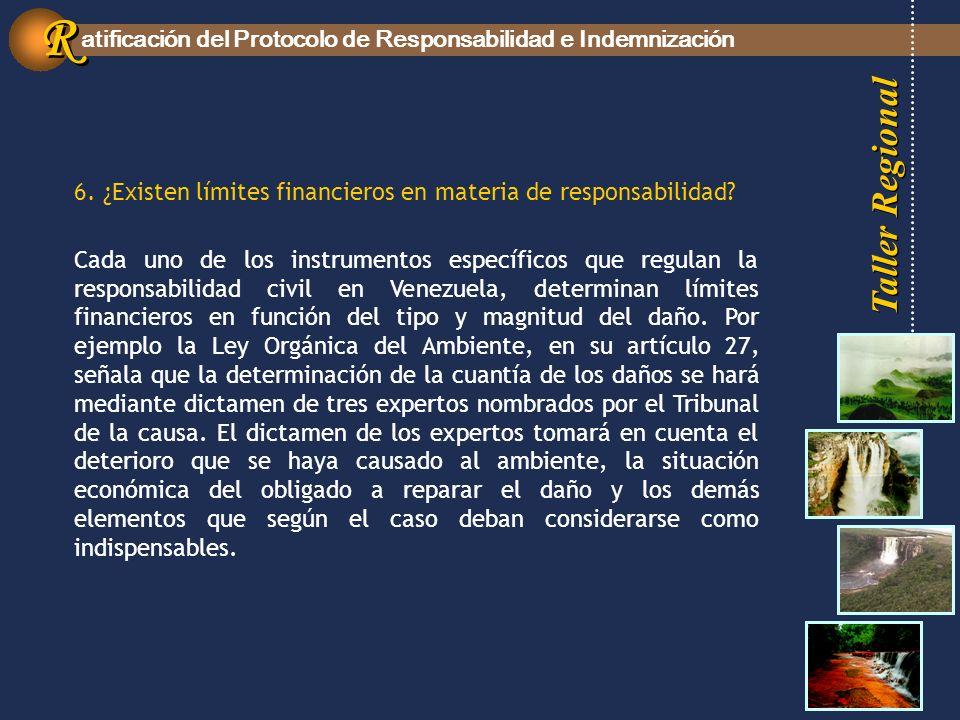 Taller Regional atificación del Protocolo de Responsabilidad e Indemnización R R 6.