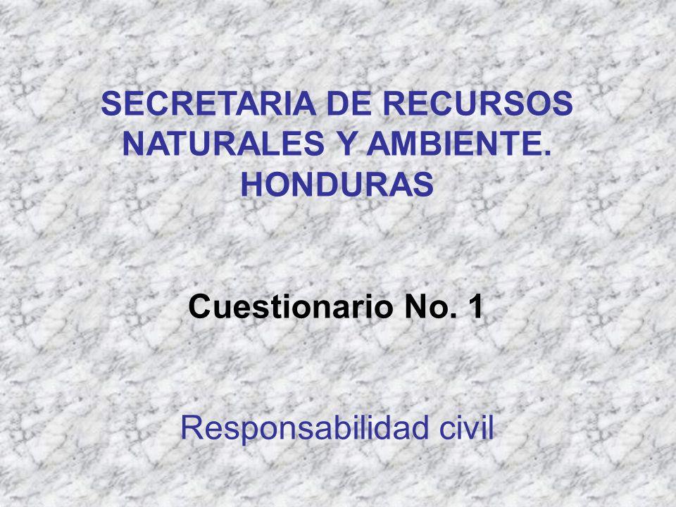 SECRETARIA DE RECURSOS NATURALES Y AMBIENTE. HONDURAS Cuestionario No. 1 Responsabilidad civil