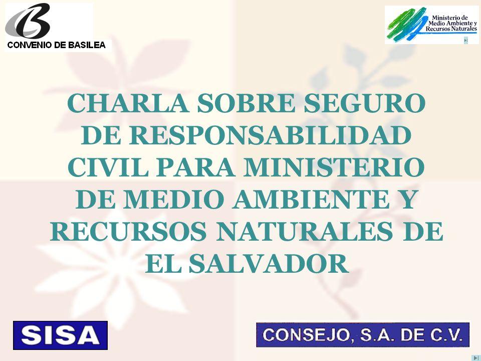 CHARLA SOBRE SEGURO DE RESPONSABILIDAD CIVIL PARA MINISTERIO DE MEDIO AMBIENTE Y RECURSOS NATURALES DE EL SALVADOR