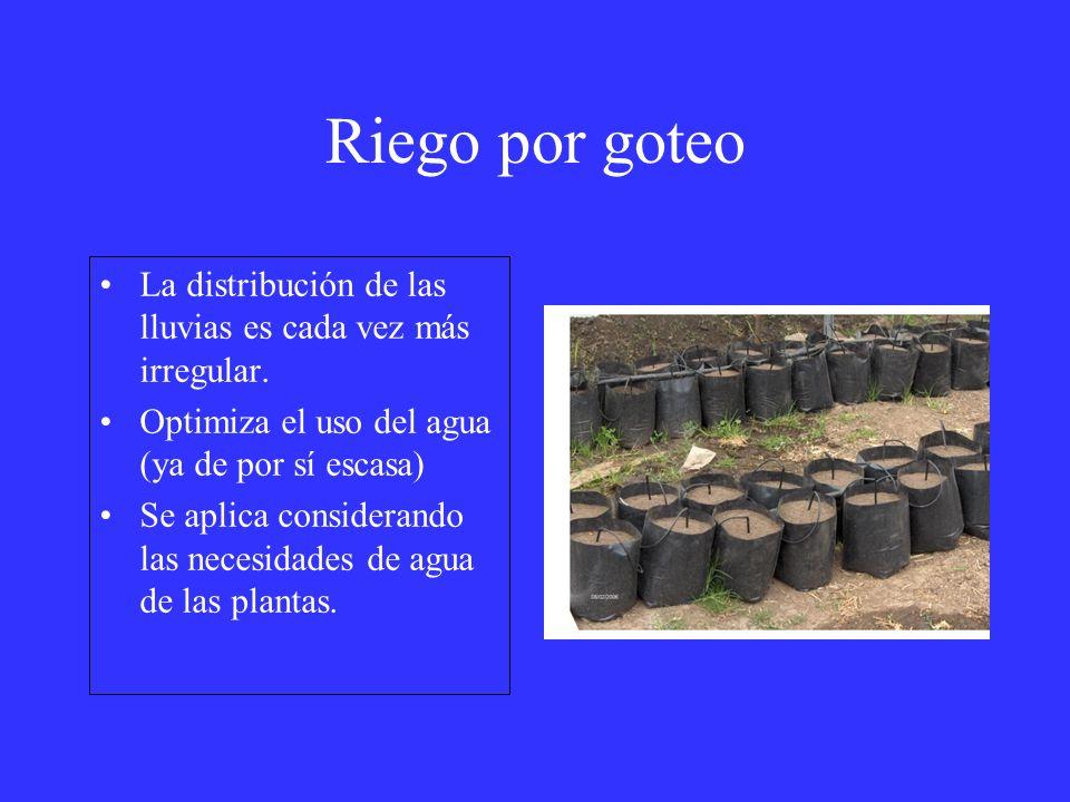 Riego por goteo La distribución de las lluvias es cada vez más irregular. Optimiza el uso del agua (ya de por sí escasa) Se aplica considerando las ne