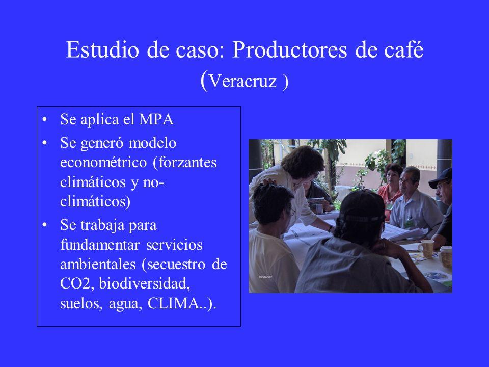 Estudio de caso: Productores de café ( Veracruz ) Se aplica el MPA Se generó modelo econométrico (forzantes climáticos y no- climáticos) Se trabaja pa