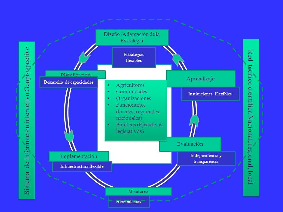 Actores Clave Diseño /Adaptación de la Estrategia Evaluación Planificación Monitoreo Implementación Aprendizaje Infraestructura flexible Instituciones